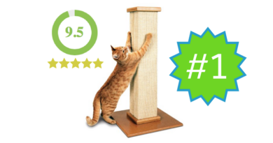 SmartCat Ultimate Scratching Post – Review