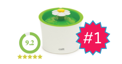 Catit Flower Fountain – Review
