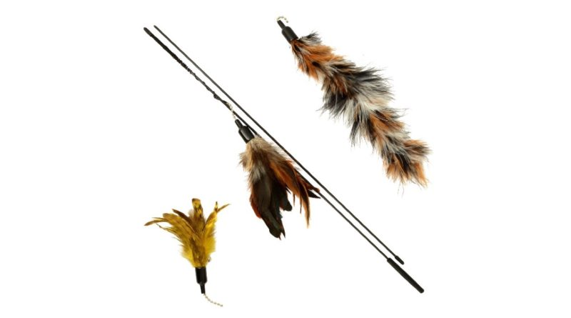The Natural Pet Company Feather Wand Cat Toy – Review