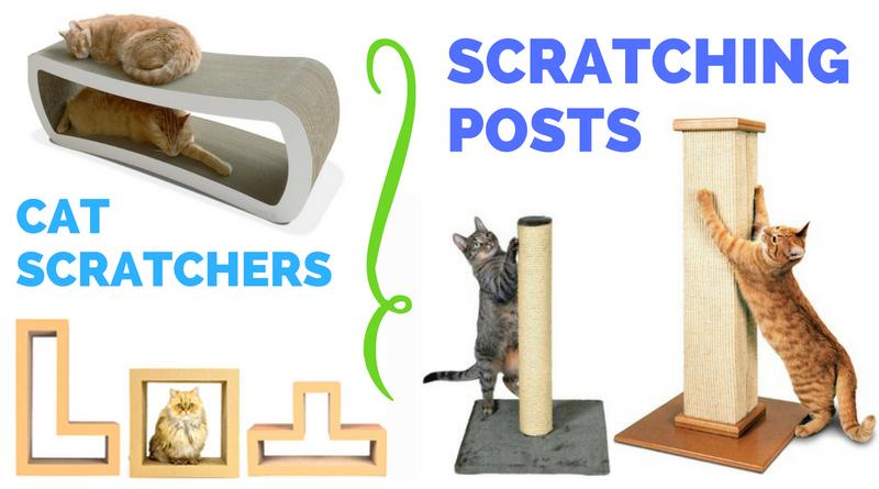 Top Cat Scratchers & Scratching Posts of 2016