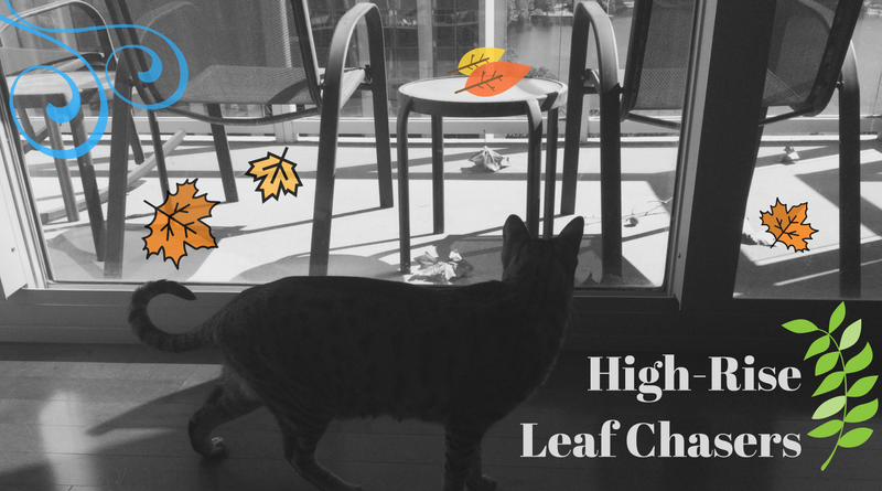 High-Rise Leaf Chasers