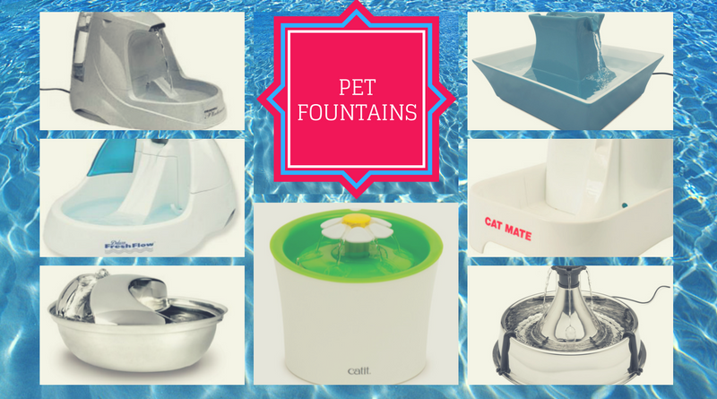 Top Pet Fountains of 2016
