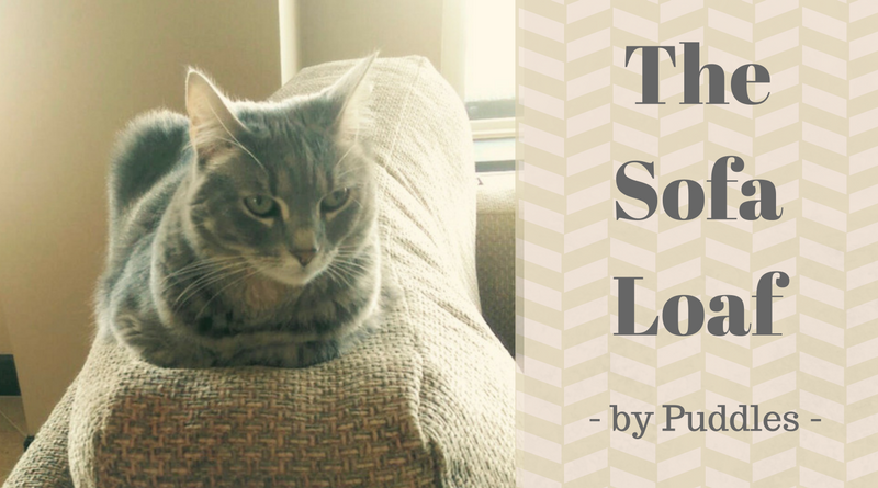 The Sofa Loaf by Puddles