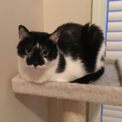 Loaf of the Day – 9/18/17