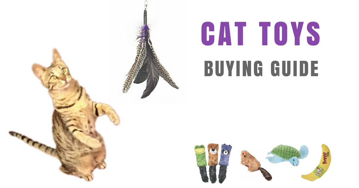 Buying Guide For Boys Toys : Cat toys buying guide kitty loaf
