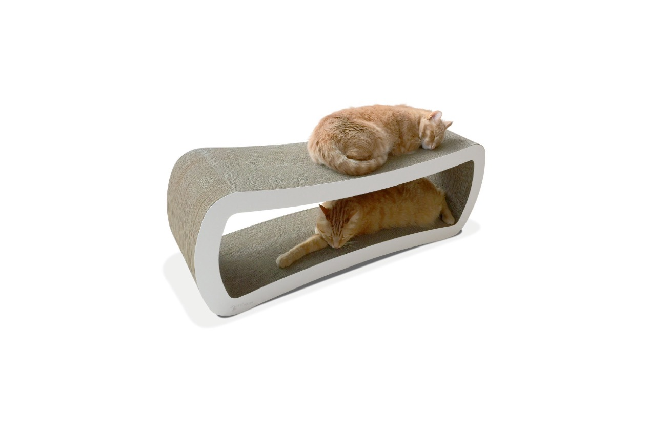 Petfusion Jumbo Cat Scratcher Lounge Review Kitty Loaf