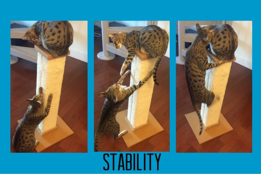 scratching-post-stability