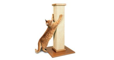 SmartCat Ultimate Scratching Post Review