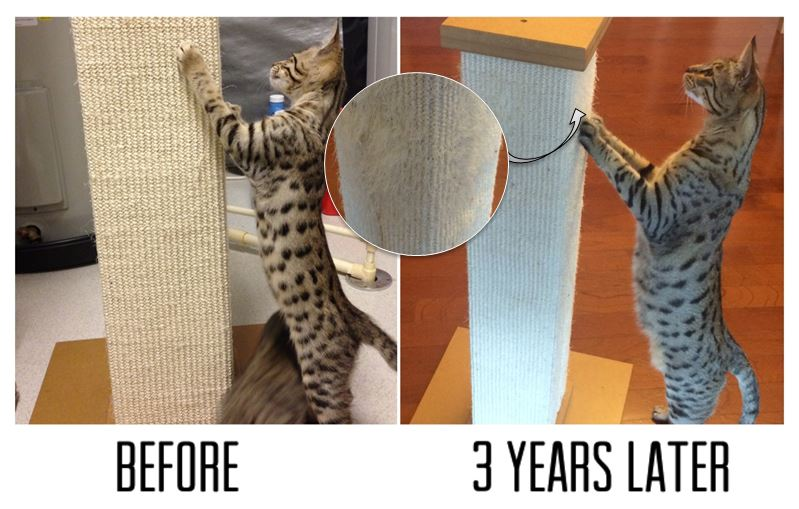 smartcat-ultimate-scratching-post-before-after