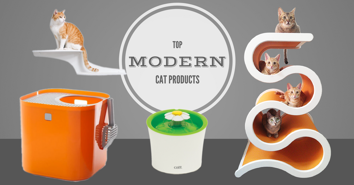 Top Modern Cat Products For Your Small Apartment