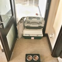 Makeshift Pet Gate