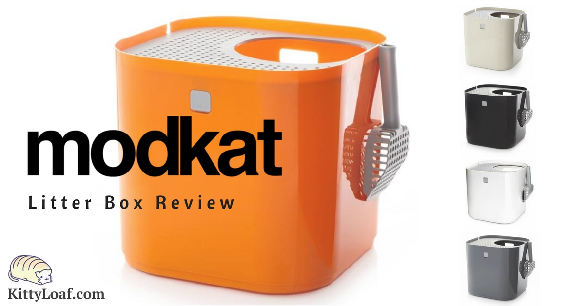 Modkat Litter Box Review Kitty Loaf