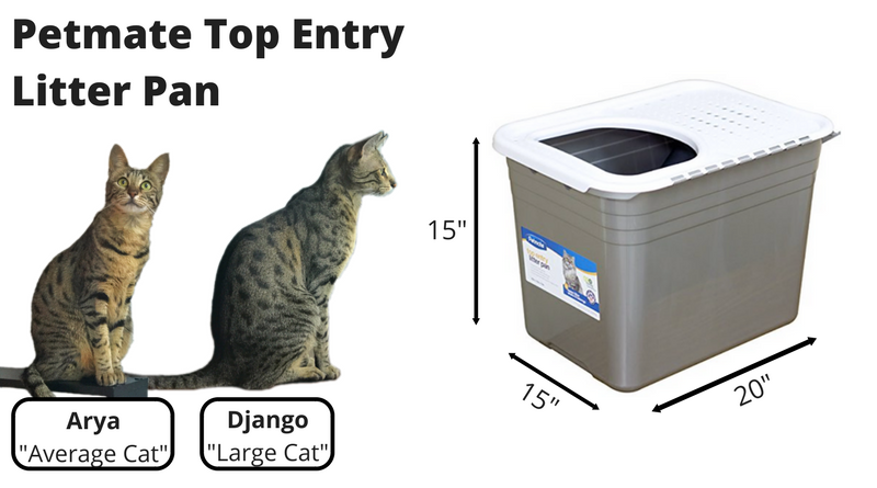 Petmate Top Entry Litter Pan Review Kitty Loaf