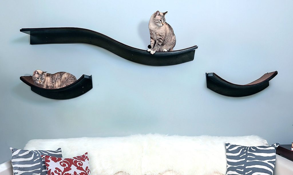 The Refined Feline Lotus Leaf Cat Shelf Review Kitty Loaf
