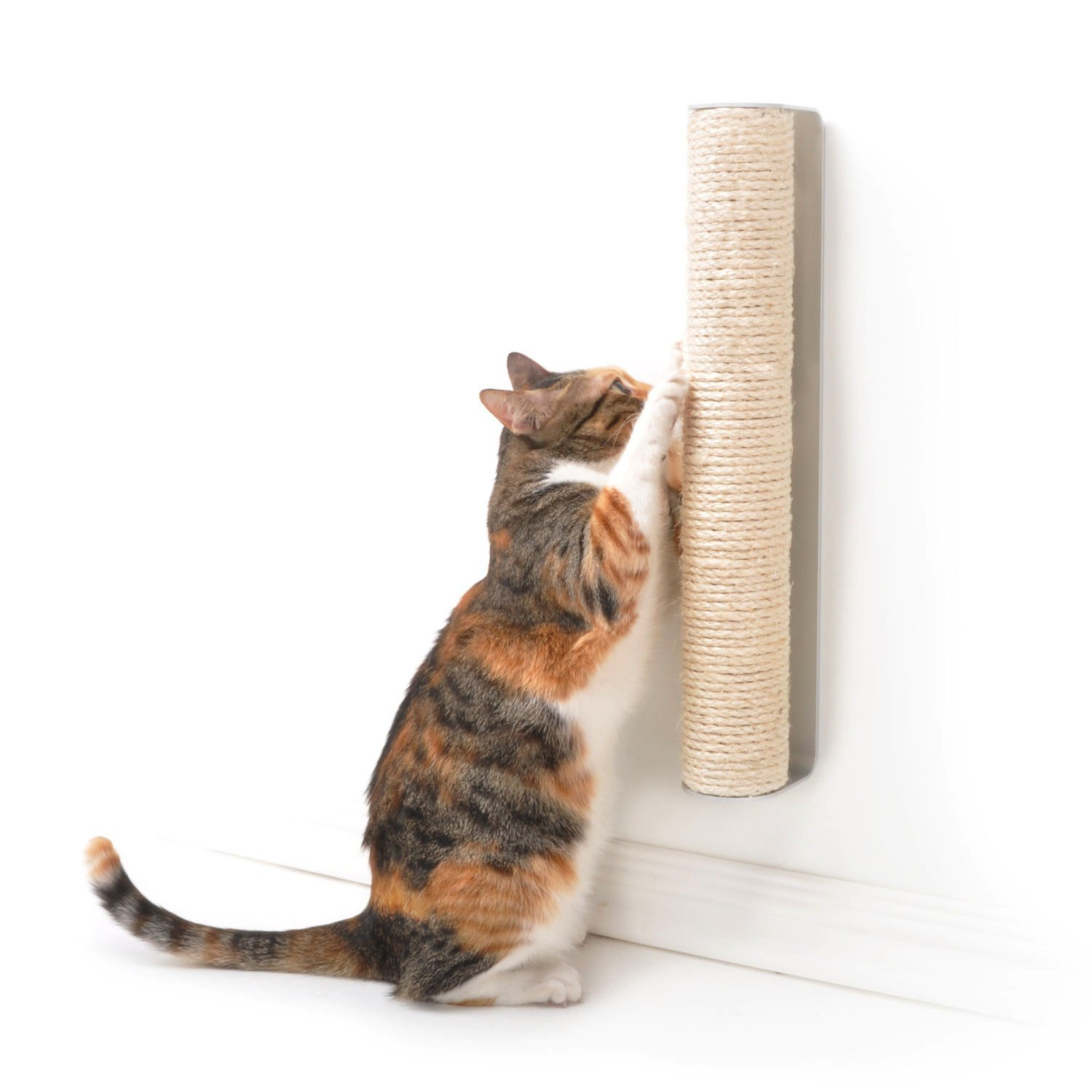 4claws Wall Mounted Scratching Post Review Kitty Loaf