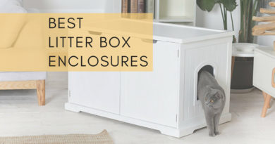 Best Litter Box Enclosures