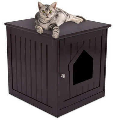Internet's Best Decorative Cat House – 1